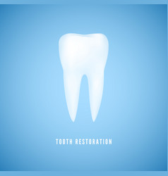 white realistic tooth clear health molar dentist vector image