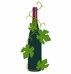 wine and grape leaves vector image