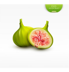3d with whole green fig and half a vector image vector image