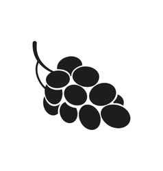 grapes on white background vector image