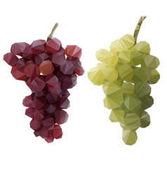 polygon grapes green and red vector image
