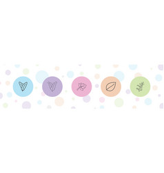 5 leaves icons vector