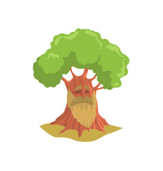 cartoon old oak with long beard humanized forest vector image