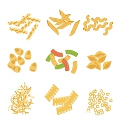 Classic Italian Pasta Types Collection vector