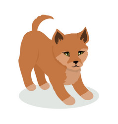 Dingo cartoon flat vector