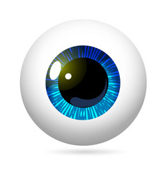 Eyeball blue iris vector