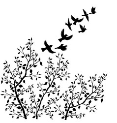 Flying birds silhouettes and tree foliage vector