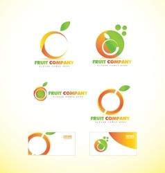Fruit company orange logo icon vector