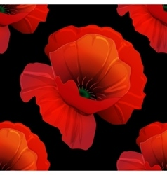 Poppy seamless pattern vector