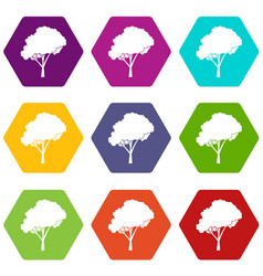 tree with a rounded crown icon set color vector image