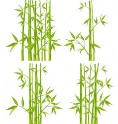 bamboo mesh vector image vector image