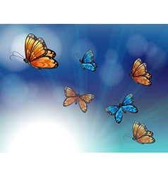 Colorful butterflies in a gradient colored vector image vector image