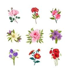 Garden Flowers Set vector image