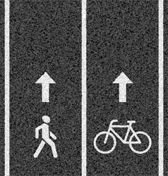 Bicycle and pedestrian paths vector image vector image
