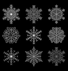 Amazing original intricate snowflakes on a dark vector