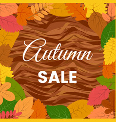 autumn leaves on a wooden table and autumn sale vector image