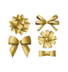 collection decorative golden bows gift box vector image