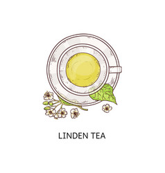 linden tea in glass cup - cute drawing healthy vector image