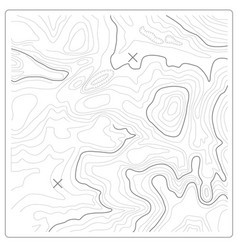 Topographic map relief and land heights vector