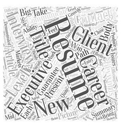 Executive Resumes Word Cloud Concept vector image
