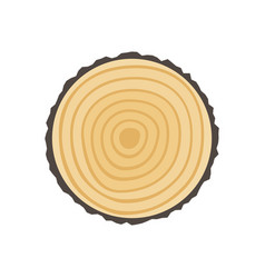 saw cut tree trunk vector image