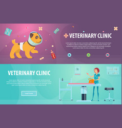 veterinary clinic horizontal banners vector image