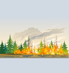 Burning forest nature disaster landscape vector
