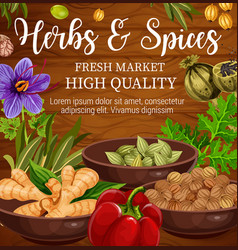 herbs and spices food seasoning wooden background vector image