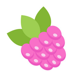 raspberry flat icon fruit and diet vector image