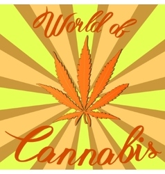 Marijuana hemp Cannabis sativa or Cannabis indica vector image vector image
