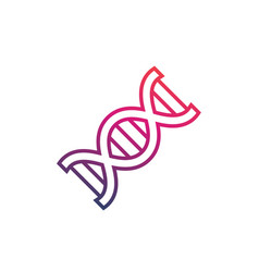 Dna strand icon on white vector