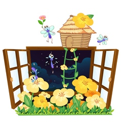 flies bird house and window vector image