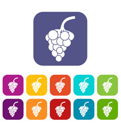 Grape branch icons set vector