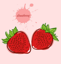 Hand draw of strawberry vector