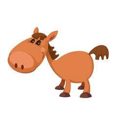Little horse vector