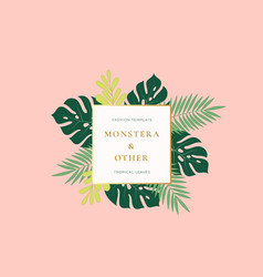Monstera palm tropical leaves fashion sign emblem vector