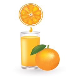 orange juice with fresh orange and juice drop vector image