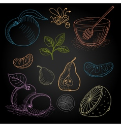 Set hand-drawn food ingredients on chalkboard vector
