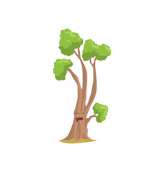 Tall humanized tree with face forest plant with vector
