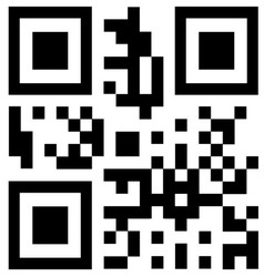 qr code says NEW vector image vector image