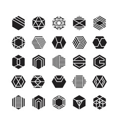 hexagon geometric icon ornament vector image