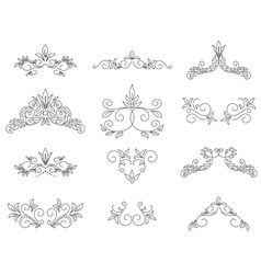 set - floral design elements vector image vector image