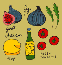 Colorful set of figs and goat cheese salad vector