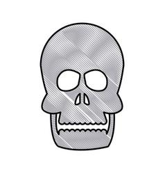 drawing human skull bone care healthy vector image