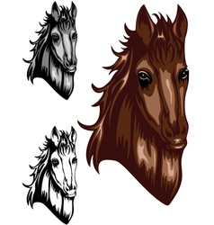 horse color set vector image