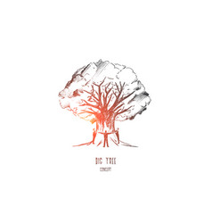 big tree concept hand drawn isolated vector image