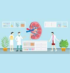 Open or sliced kidneys on laboratory vector