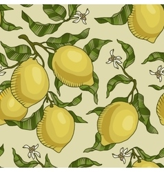 Pattern with lemon branches vector
