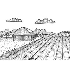 rural landscape in engraving graphic style hand vector image