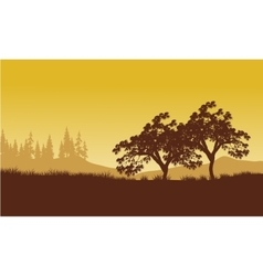 silhouette of tree with yellow backgrounds vector image